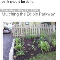 Tbt~ Mulching the Edible Parkway