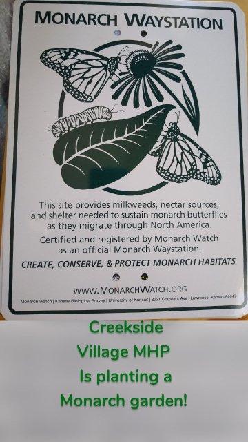 Creekside Village MHP Is planting a Monarch garden!