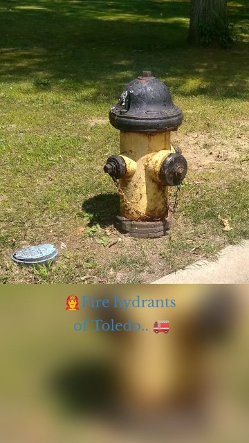 👨🚒Fire hydrants of Toledo.. 🚒